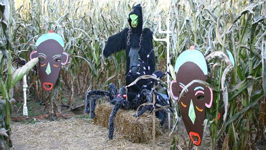 Welcome to the Haunted Corn Maze!