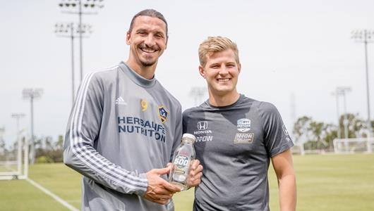 Zlatan Ibrahimovic and Marcus Ericsson